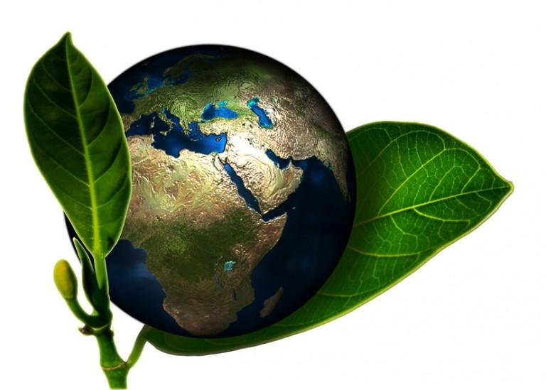 Organic - aus Respekt und Liebe zur Natur